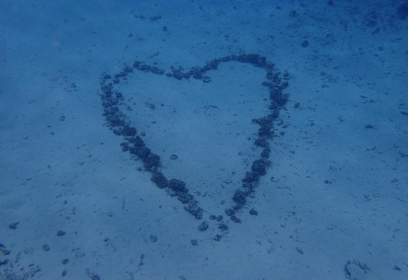 Heart in the Sand, Bora Bora, Pure Snorkeling Review