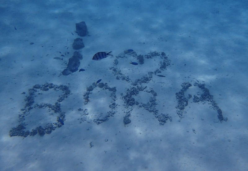 I Love Bora in the Sand, Bora Bora, Pure Snorkeling Review