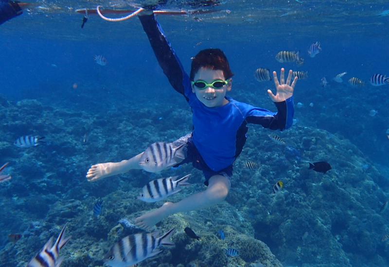 Pure Snorkeling Review Bora Bora-Great for Kids