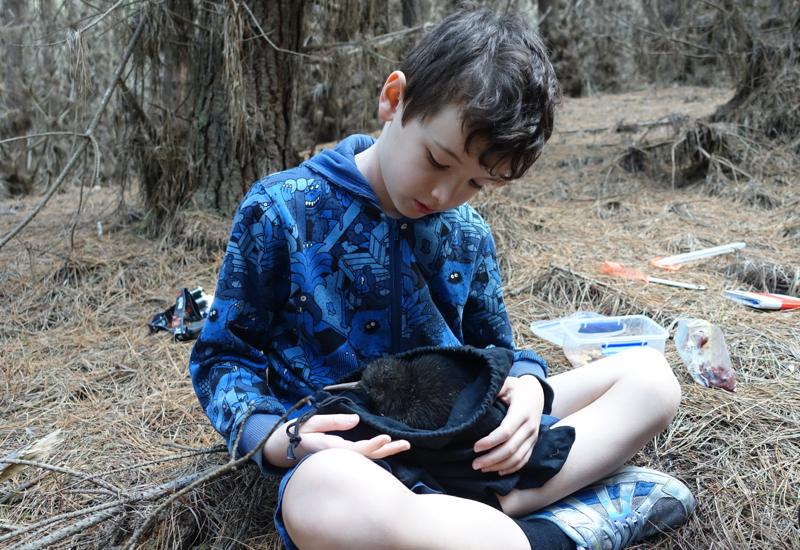 Holding Suave, a Baby Kiwi, Cape Sanctuary