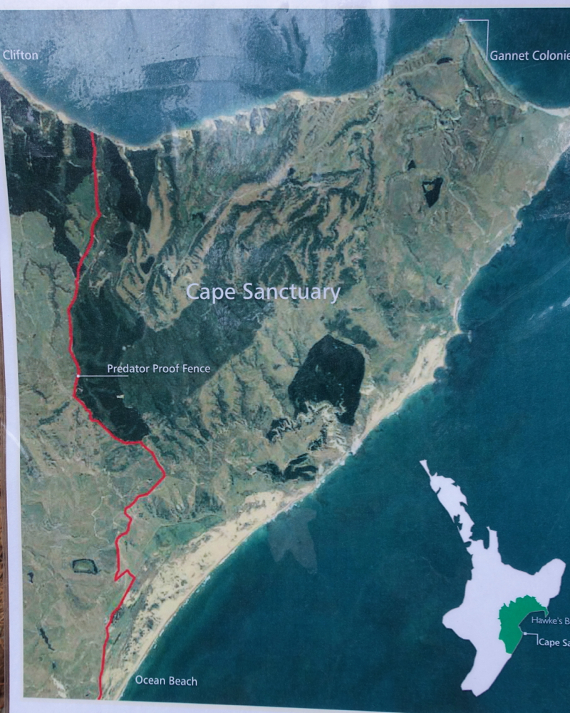 Cape Sanctuary Map and Predator Proof Fence