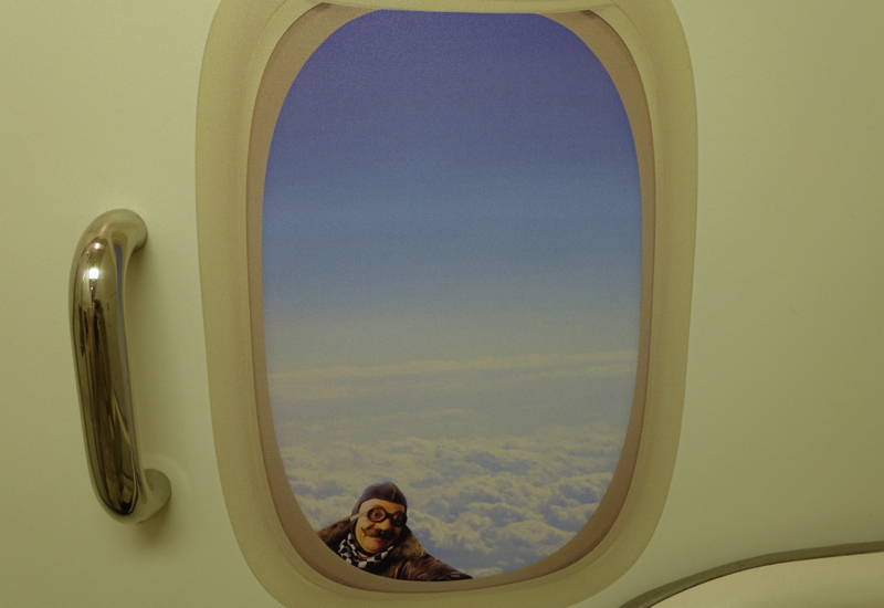 Whimsical Bathroom Painting, Air New Zealand Review