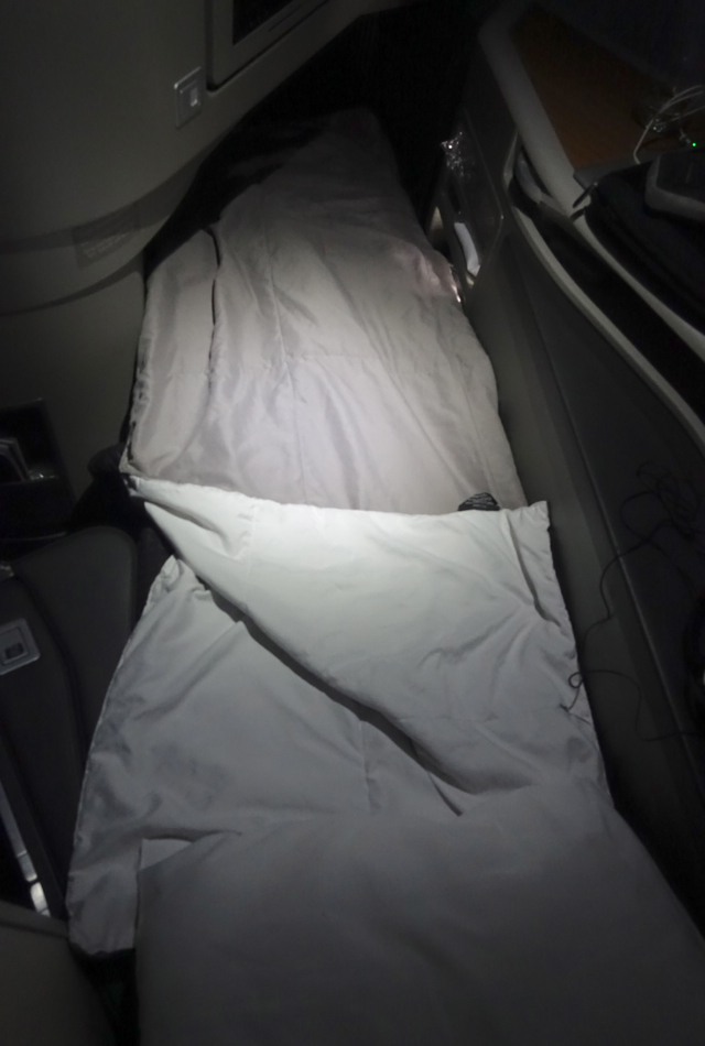 Flat Bed Not Completely Flat, American A321 First Class Review