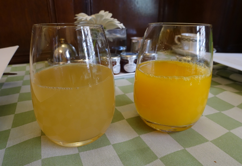 Fresh Squeezed Juices, Milestone Hotel Breakfast Review