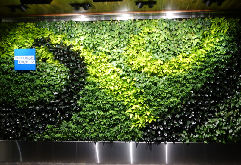 Plant Wall, AMEX Centurion Lounge Houston Review
