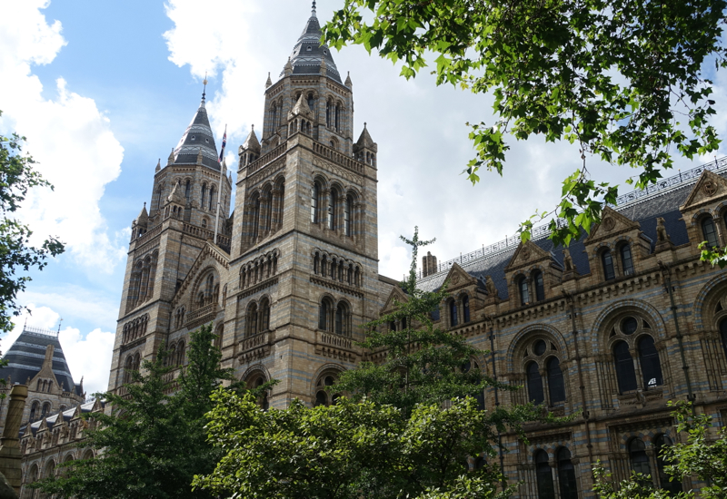 Review: London's Natural History Museum
