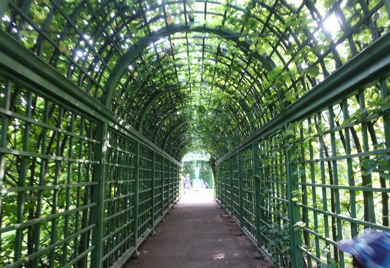Arbor, Summer Garden, St. Petersburg Russia