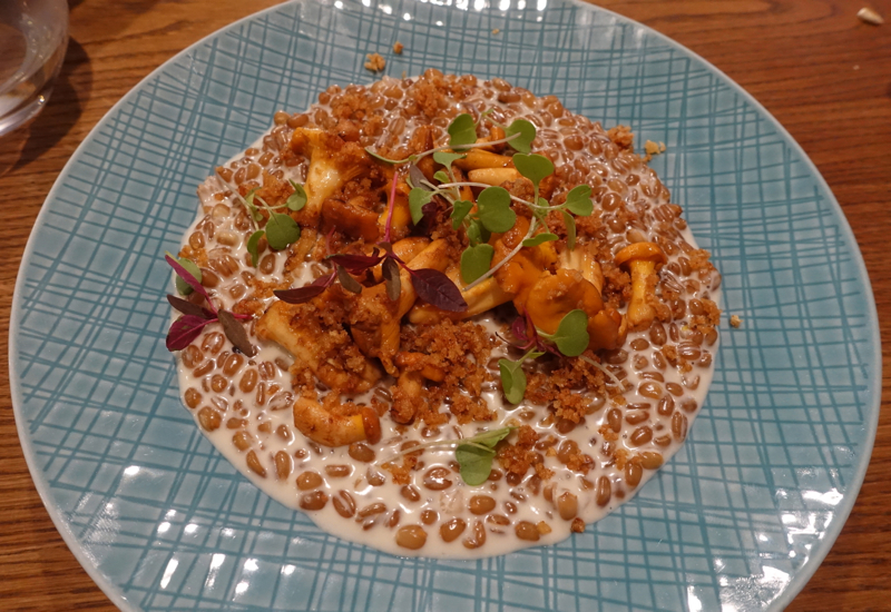 Wheat with Chanterelles, Duo Gastrobar Review, St. Petersburg Russia