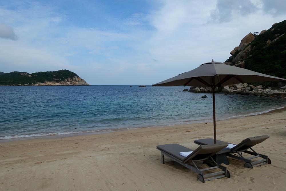 Beach and Lounge Chairs