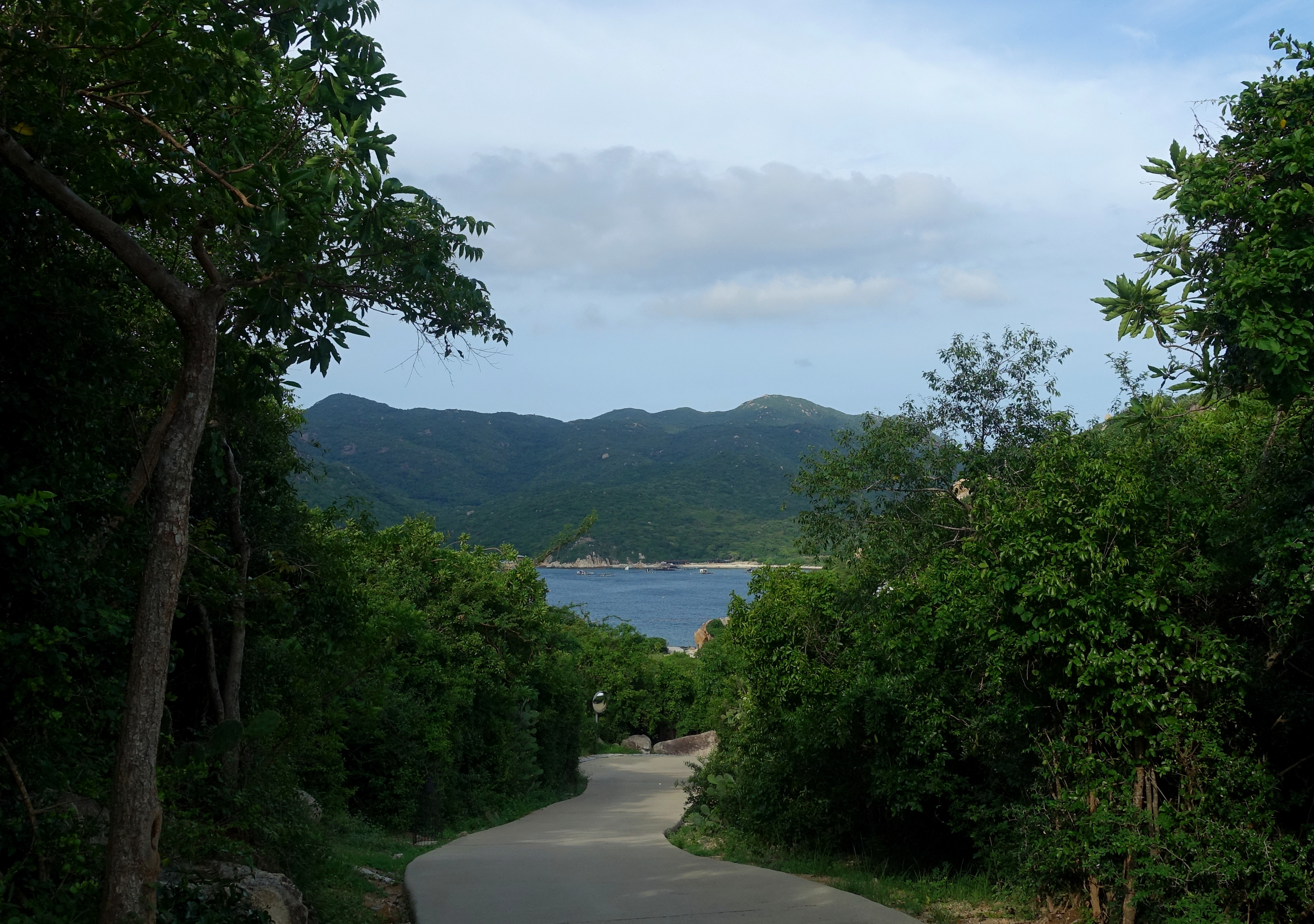 Sea View from a Resort Path