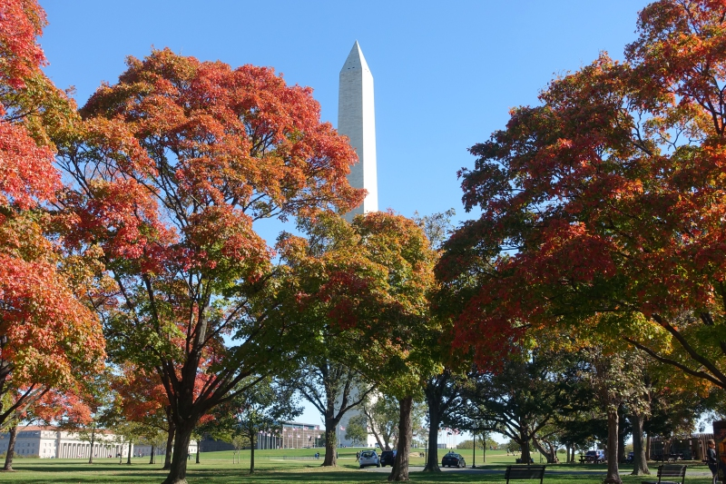24 Hours in Washington, DC