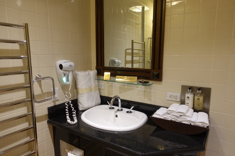 Shower Room, Emirates Lounge JFK Review