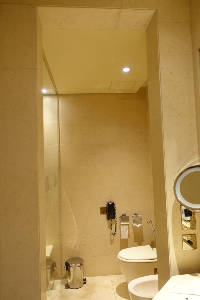 No Door to Toilet, Raffles Dubai Review