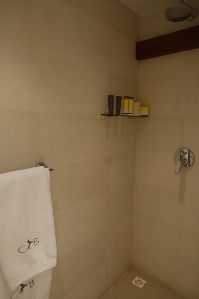 Shower, Cheval Blanc Randheli Lounge Review