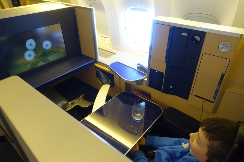 ANA First Class Suite Review