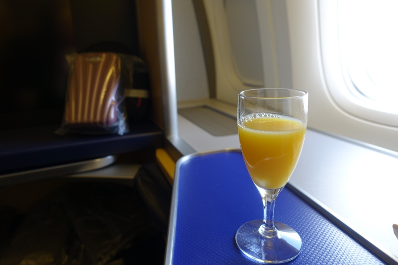 Pre-Flight Drink, ANA First Class Review