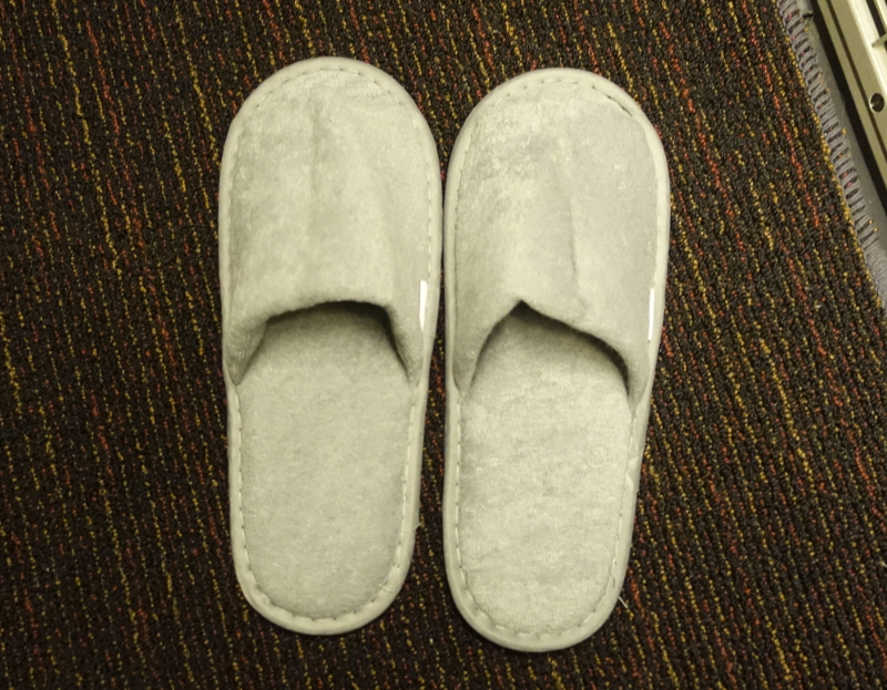 Gray Slippers, JAL Sky Suite Business Class Review