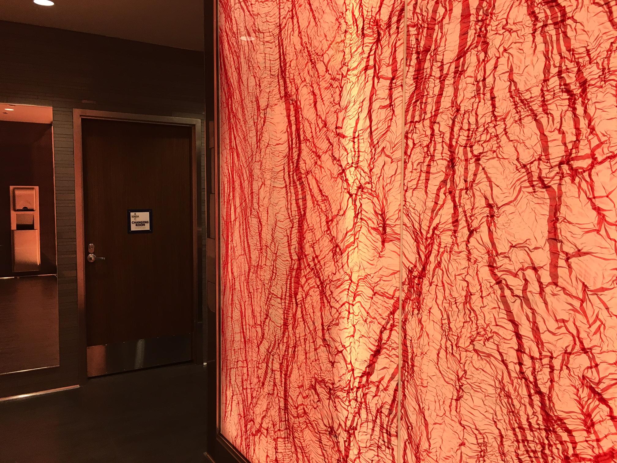 Wall Near Bathroom, Delta Sky Club Seattle Review