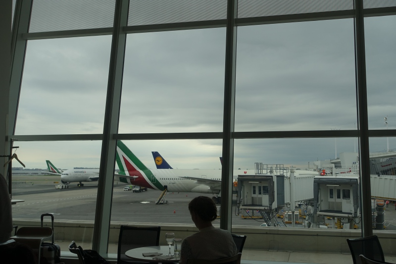 View from Lufthansa Business Class Lounge JFK