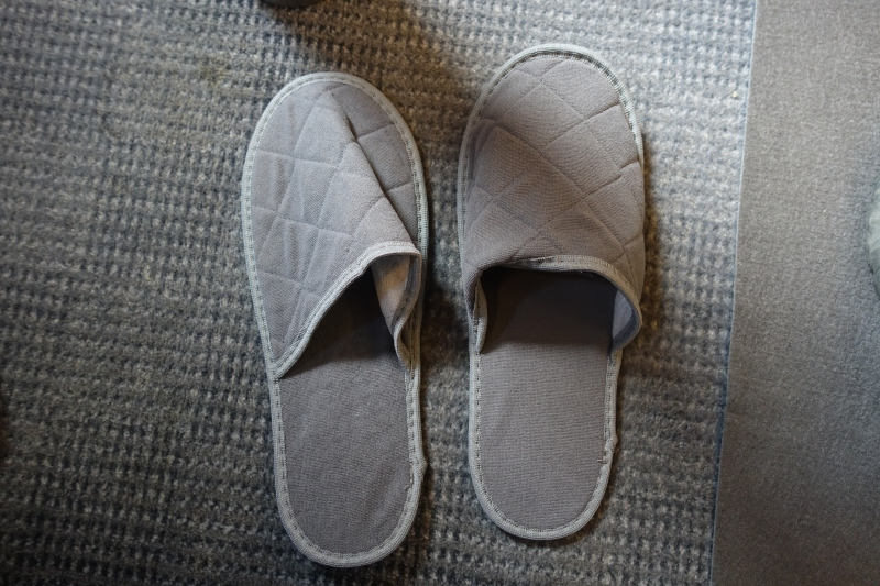 Slippers, Sapsan Business Class Review