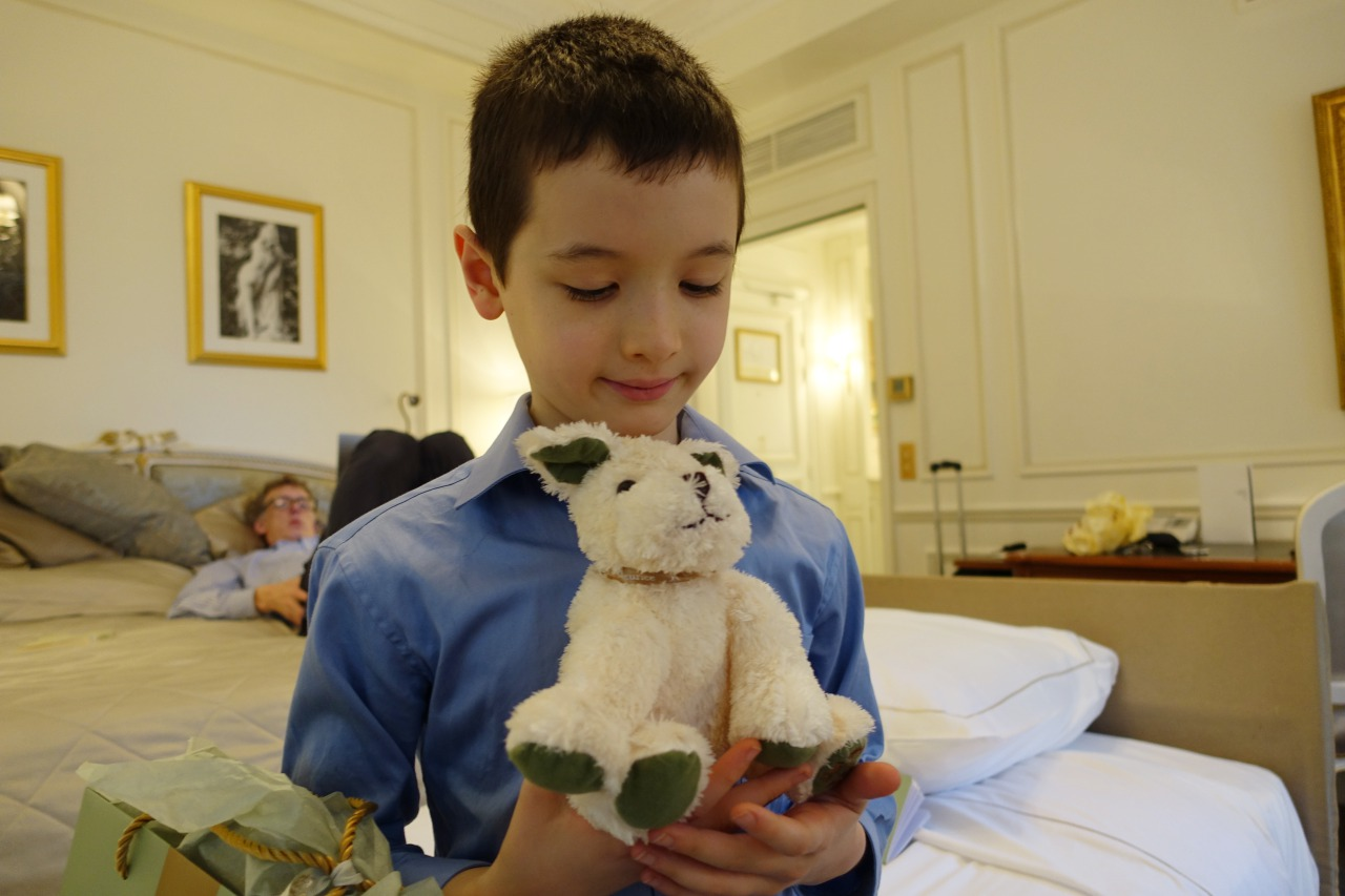 Plush Dog Kid's Welcome Amenity, Le Meurice, Paris