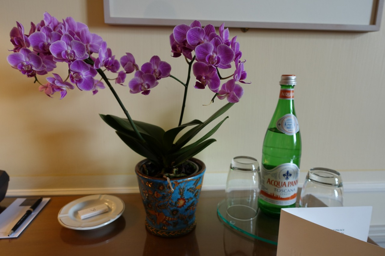 Bellevue Palace: Orchids and Partly Drunk Acqua Panna Water