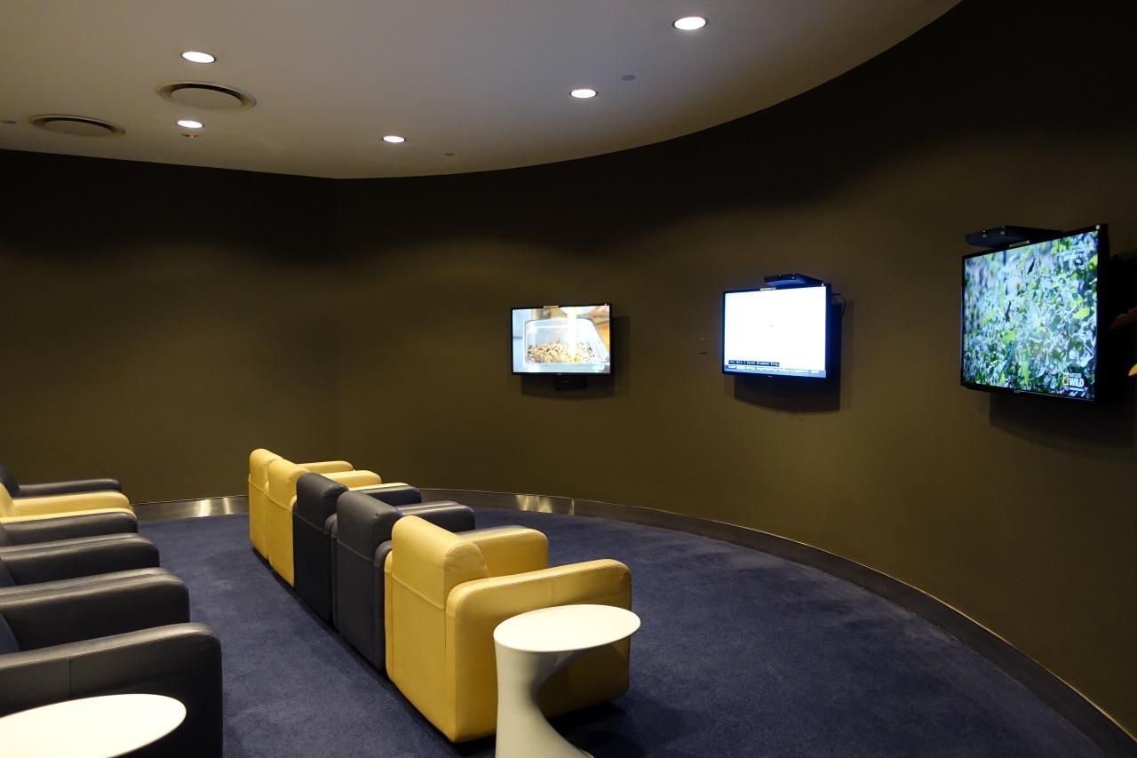 JFK Lufthansa Business Class Lounge TV Room