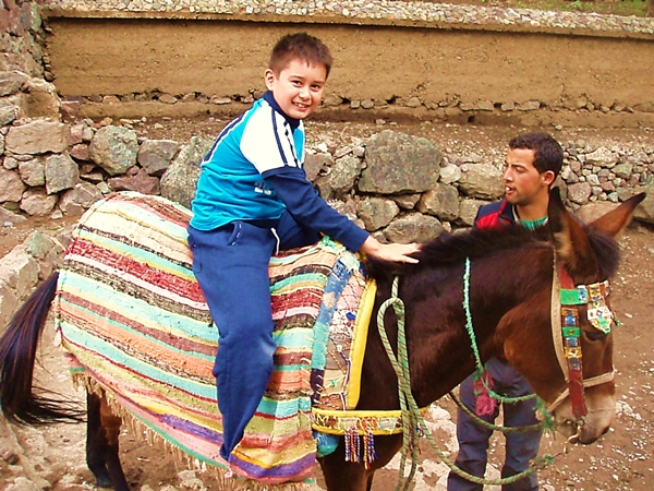 Mule ride to Kasbah du Toubkal-Marrakech with Kids