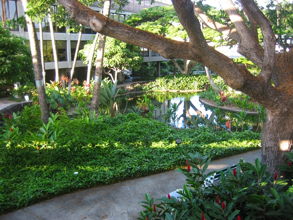 Best Airports for Kids-Outdoor courtyard and koi pond, Honolulu Airport