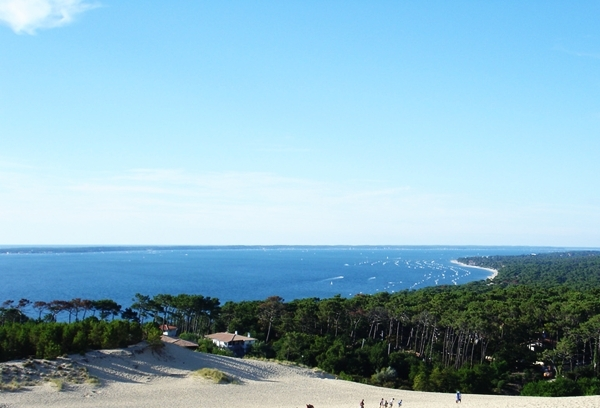 Food, Romance and Adventure in Bordeaux France-Arcachon