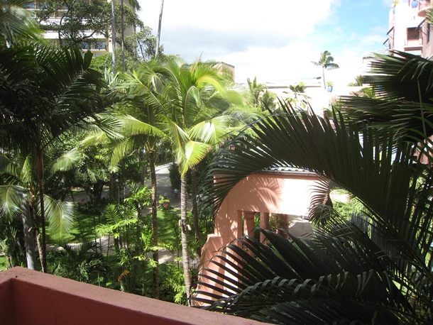 The Royal Hawaiian Hotel Review-Grove Room View