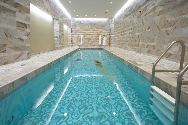 Best toronto luxury hotels - Hotels with saltwater swimming pools ...