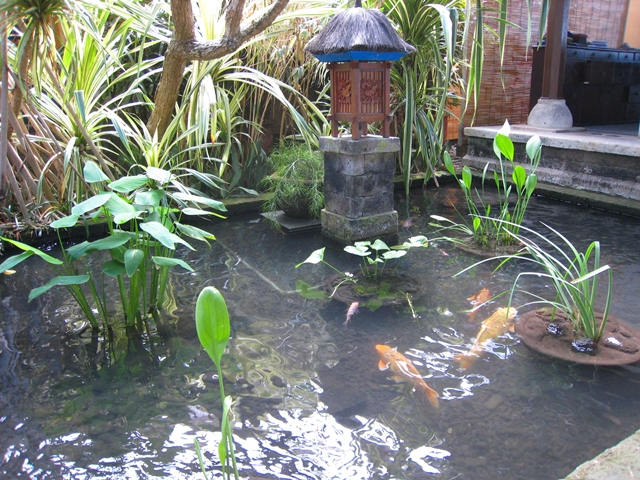 Four Seasons Bali Jimbaran Bay-Carp Pool