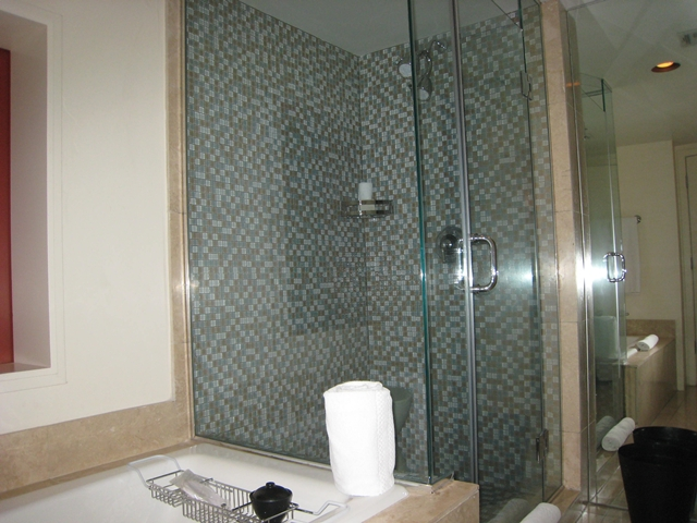 Sanctuary Camelback Mountain Review - Shower