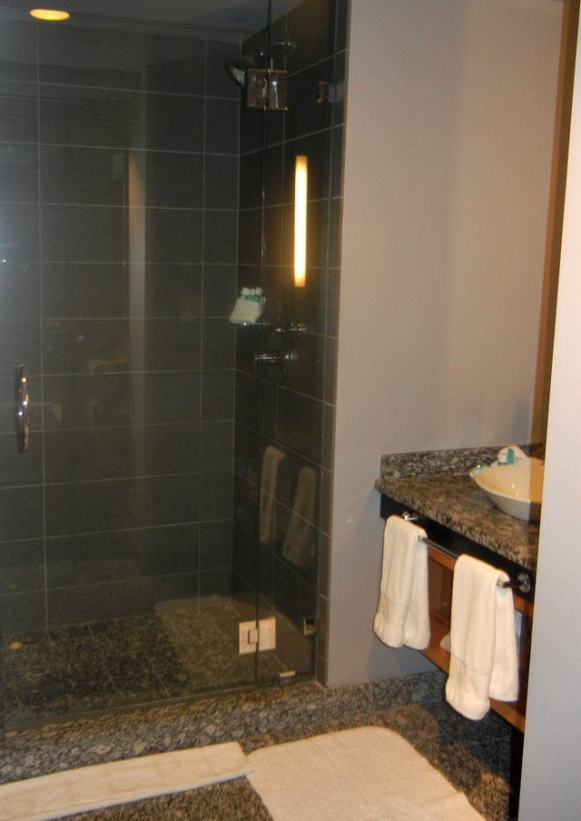 W Boston Hotel Review - Walk-in Shower