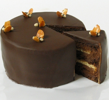 Busy Bee Cake-Black Hound Bakery