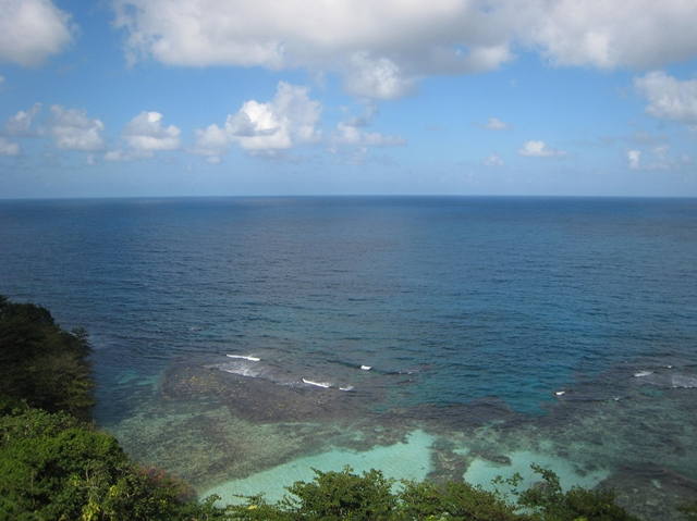 Mystic Mountain Bobsled and Zipline Review, Jamaica - Ocean View from Sky Tram