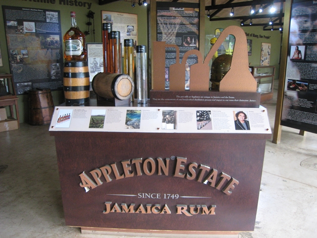 Mystic Mountain Bobsled and Zipline Review, Jamaica