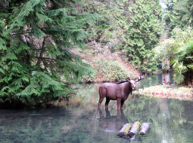 Stanley Park Miniature Train-Vancouver with Kids-Moose in Lake
