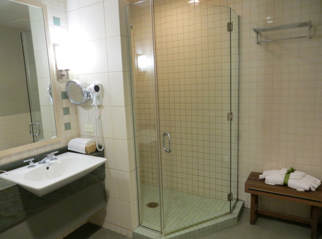 Review-American Admirals Lounge JFK - Shower