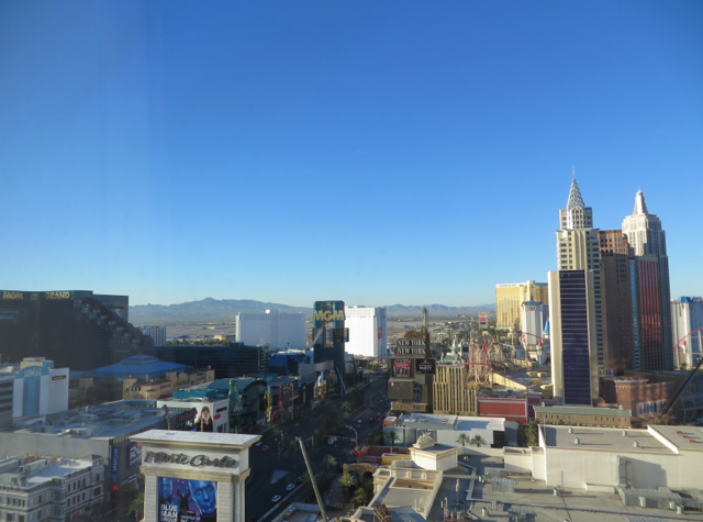 Mandarin Oriental Las Vegas Hotel Review - Strip View