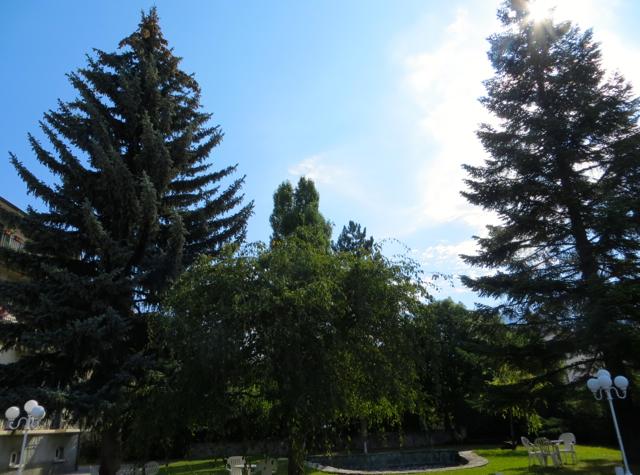 La Grande Eperviere Barcelonnette France Hotel Review - Garden