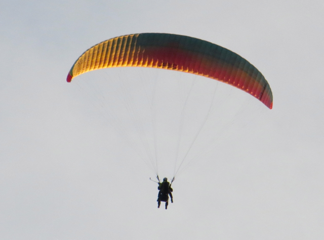 Things to Do in Barcelonnette, France - Paragliding