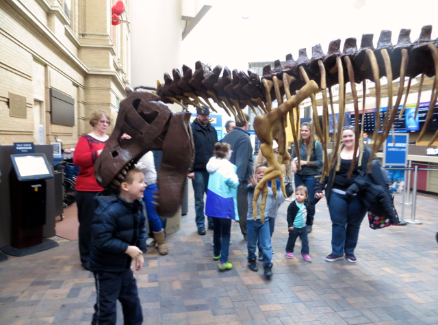 Top 7 Things to Do in Denver with Kids - T-Rex at Denver Museum of Nature and Science