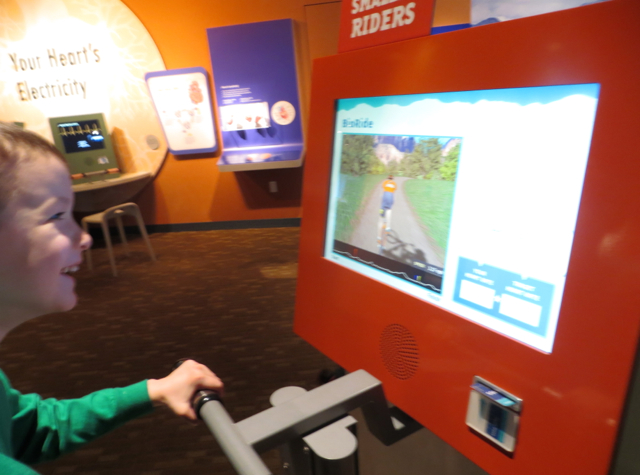 Top 7 Things to Do in Denver with Kids - Expedition Health, Denver Museum of Nature and Science