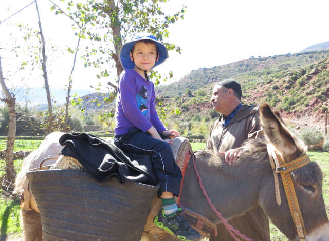 Atlas Mountains Berber Village Tour from Marrakech - Donkey Ride