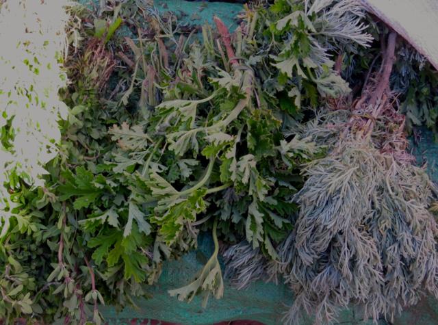 Atlas Mountains Berber Village Tour from Marrakech - Moroccan Mint and Herbs, Berber Market Souk