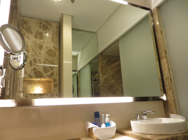 Singapore Airlines Private Room Lounge Review - Shower