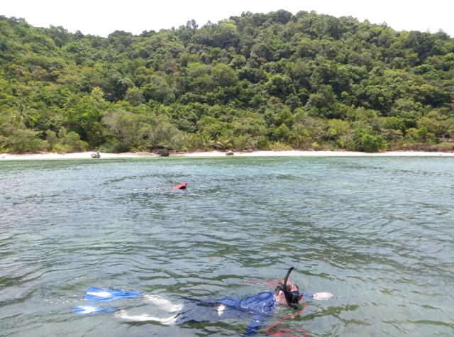 Koh Taen Snorkeling with Tours Koh Samui - Snorkeling