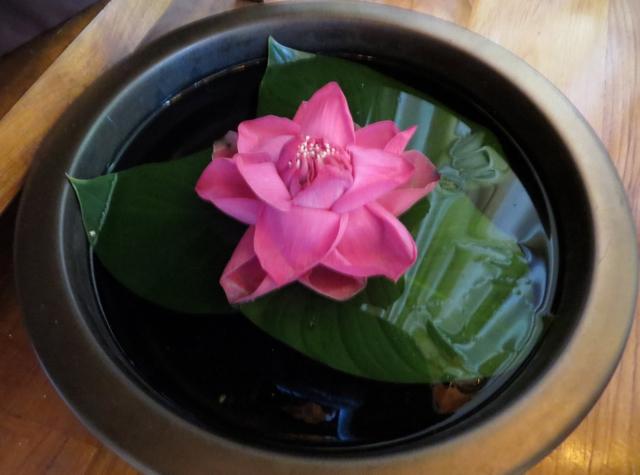 Four Seasons Koh Samui Review - Spa Flower
